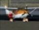 pilotgothic1